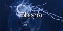 Browse our Selection of Shisha